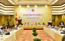 Người phát ngôn Chính phủ nói về vụ ông Trịnh Vĩnh Bình