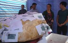Bắt được cá Bà Bằng nặng hơn 400 kg, ngư dân tổ chức an táng