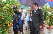 Chủ tịch Đà Nẵng đội mưa động viên tiểu thương