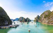 Hơn 10 triệu đồng cho tour thăm đảo Đầu Lâu