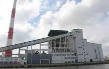 Nhà máy giấy Lee & Man tiền hậu bất nhất (?!)