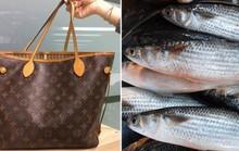 Đài Loan: Xách túi ngàn USD cháu tặng đi đựng... cá tươi
