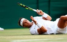 R.Nadal tan giấc mơ hoa