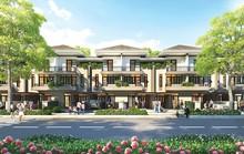 Kiến Á dự kiến giới thiệu nhiều dự án thuộc dòng sản phẩm Lavila