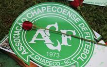 Một năm thảm kịch Chapecoense: Hồi ức của những người ở lại