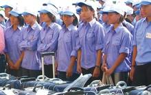 Lập cơ sở dữ liệu về người lao động Việt Nam ở nước ngoài