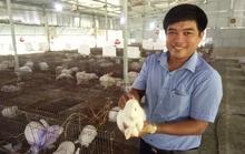Ông chủ trang trại thỏ 8X