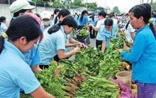 Công nhân tăng ca để có thêm…bữa ăn