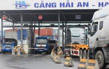 Nghịch lý chở hàng từ TP HCM đi Vũng Tàu đắt hơn đi Singapore