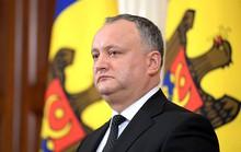 Moldova: Bộ Ngoại giao trục xuất quan chức Nga, Tổng thống nổi giận