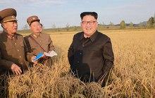 Chính quyền ông Donald Trump lần đầu thừa nhận liên lạc trực tiếp với Triều Tiên