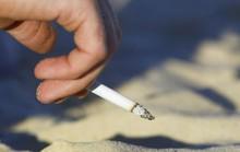 Từ 1-11, Thái Lan cấm du khách hút thuốc lá trên bãi biển