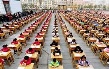 Mẹ hổ Trung Quốc phát điên vì cày bài tập về nhà của con