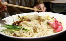 Xếp hàng chờ ăn… mì côn trùng ở Nhật