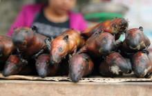 Mê thịt chuột, tiết canh, người Việt bao giờ mới văn minh?