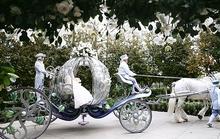 Đám cưới cổ tích của cặp đôi con nhà giàu ở Singapore