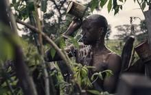 Để được kết hôn, nam thanh niên Senegal sống trong rừng một tháng