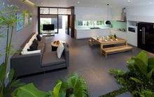 Xu hướng tạo vườn trong nhà trong thiết kế nhà ở