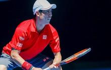 Dính chấn thương, Kei Nishikori rút khỏi Giải Úc mở rộng 2020