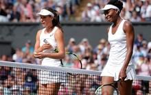 Thán phục khi lão bà Venus trở lại chung kết Wimbledon