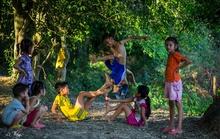 Chuyện lũ trẻ xóm Dừa…