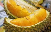 Các món ăn sầu riêng chữa bệnh