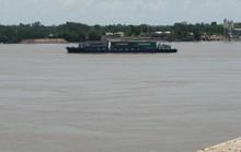 Sông Vàm Cỏ Đông bị đầu độc!