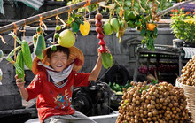 Thời đại 4.0 mà chỉ 1% DN Việt biết xuất khẩu trực tuyến, 99% đang làm gì?