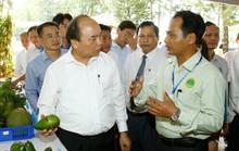 Nông nghiệp thông minh là hướng đi đột phá của Bình Phước