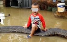 Bé trai cưỡi con trăn 50kg gây sốc trên báo Anh, là ở Thanh Hóa