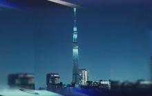 VTV chán dự án tháp truyền hình cao nhất thế giới