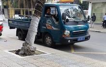 Đà Nẵng phạt tiền xe biển xanh đậu sai quy định