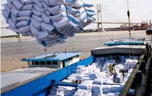 Năm buồn của gạo Việt, xuất khẩu giảm mạnh gần 2 triệu tấn