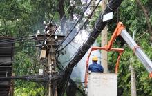 Nhánh cây gãy gây chập điện tại trung tâm Sài Gòn
