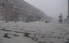 Nước Mỹ trong mờ mịt mưa tuyết