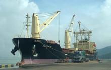 Mua cảng Quy Nhơn rồi rút ruột?