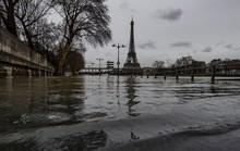 Paris chới với trong nước lũ sông Seine