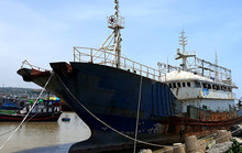 Bình Thuận: Bán đấu giá tàu ma trôi dạt trên biển