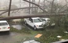 """Mỹ: Cận cảnh """"bão khủng khiếp nhất 100 năm"""" càn quét bang Florida"""