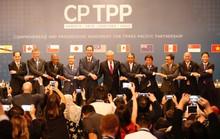 Sợ thuốc độc của Mỹ, Trung Quốc muốn gia nhập CPTPP?