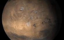 Thủy tổ loài người đang sống trên Sao Hỏa?