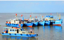 Thu hồi bằng khen sếp chi cục thủy sản vì kỷ luật nhân viên sai thẩm quyền