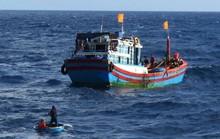 Một ngư dân rơi xuống biển mất tích