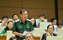 Có nhiều bài viết xuyên tạc việc Chủ tịch nước Trần Đại Quang từ trần