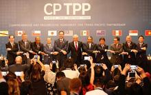 CPTPP đạt đột phá, kích hoạt 60 ngày đếm ngược