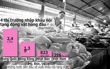 Nguy cơ Việt Nam thành bãi đáp nội tạng ngoại