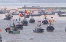 Siêu tàu Trung Quốc vét sạch cá thế giới