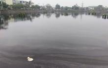 Đà Nẵng: Hồ điều tiết bốc mùi hôi thối khiến dân bất an