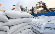 Tránh giật cục khi điều hành xuất khẩu gạo