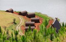 Yêu cầu xử lý doanh nghiệp băm nát hồ Tuyền Lâm